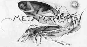 kafka1 metamorfosis
