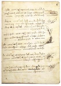 Leonardo da Vinci- Codex on the flight of birds